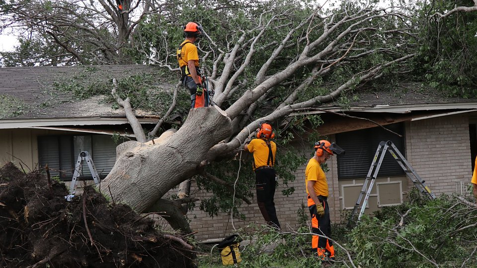 dallas chainsaw disaster relief